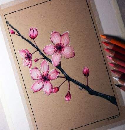 Super Tree Drawing Pencil Cherry Blossoms Ideas Cherry Blossom Drawing Tree Drawings Pencil Cherry Blossom Art
