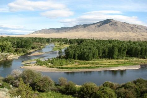 The Salmon Fly Ranch on the Big Hole River is one of the most beautiful Montana fishing properties on the market today: http://fayranches.com/ranches-for-sale/montana