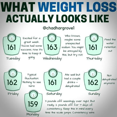 This post explaining what weight loss usually looks like,  muscle gain diet and why it can be so frustrating at times. Your progress isn't what the scale says tomorrow morning. But your weight over time is still an important marker of what's happening. Just don't expect it to go where you want. Let your actions and commitment to your plan be consistent, because you can't expect the scale to be. you have to learn to ignore what the scale says and pay attention to what the trend says over weeks.