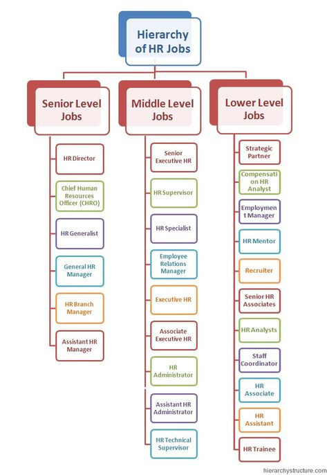 The Hierarchy of HR Job Levels.These are the dedicated professionals who are responsible to take care of the human resources department for any corporation.