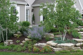 Natural Outcropping Need To Fix Front Corner By Birch Tree With Outcropping Of Stones That Fade In Landscape Design Front Yard Landscaping Yard Landscaping