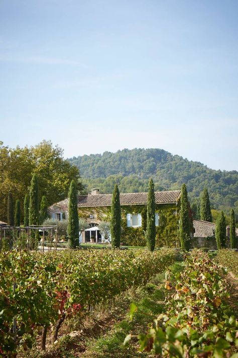 Discover designer Jocelyne Sibuet's characterful hotels in France on HOUSE - design, food and travel by House & Garden Vineyard Vines Stickers, Vineyard Vines Whale, Provence, Vineyard Vines Outfits, Italian Vineyard, Tuscany Vineyard, Wonderful Places, Beautiful Places, Weekend France