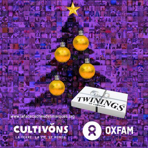 Associated British Foods, en tant que groupe propriétaire de grandes marques comme Twinings : vous devriez profiter des fêtes pour faire plaisir à vos consommateurs et aux centaines de milliers de personnes qui vous demandent de contribuer à mettre un terme aux accaparements de terres. Agissez ! www.behindthebrands.org/fr/actnow