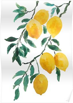 yellow lemon 2018 Poster by colorandcolor Lemon Painting, Lemon Watercolor, Simple Watercolor Flowers, Watercolor Trees, Watercolor Animals, Watercolor Background, Watercolor Landscape, Yellow Painting, Watercolor Tattoo