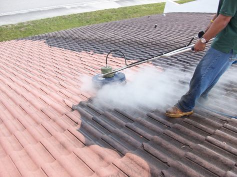 Pressure Clean Roof Service In Hollywood Fl By Experts Call 954 828 0233 Roof Cleaning House Roof Roof
