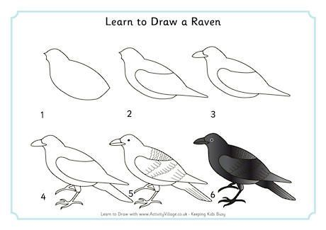 Learn To Draw A Raven With Images Bird Drawings Crows Drawing
