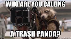 Trash Panda Meme Google Search Trash Panda Meme Trash Panda