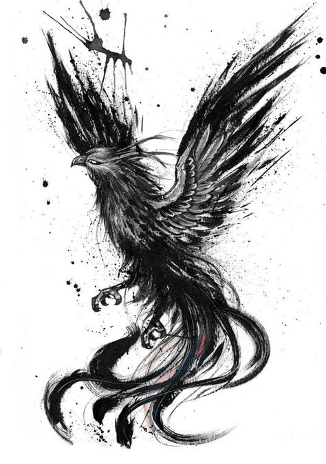 Phoenix (2018) Ink drawing by Doriana Popa | Artfinder