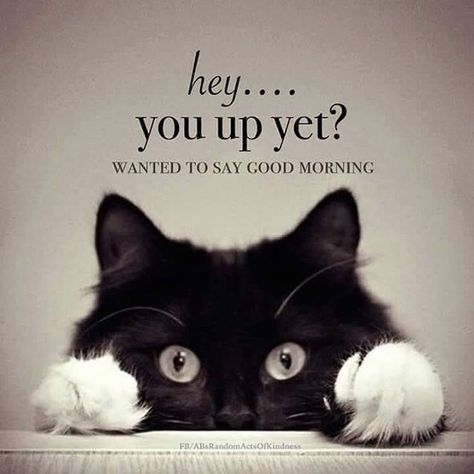 Good morning Beautiful!!!! I hope you slept well! I am finally giving up on going back to sleep after almost 2 hrs of tossing and turning! Off to shower and see a sunrise... hope your are having a wonderful morning where you are. LAB