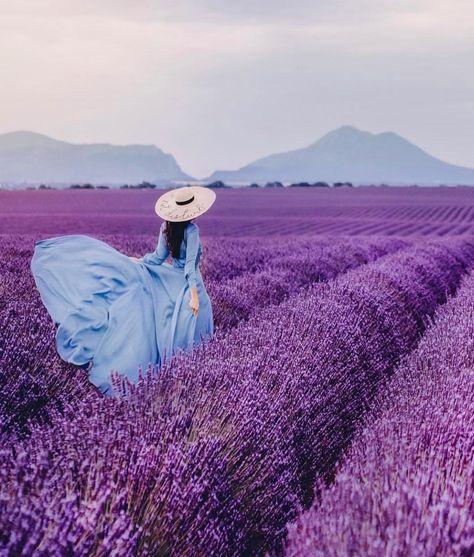 Dating femeie Provence caut femei divortate alba iulia