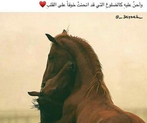 1000 Images About Songs Poetry Writings On We Heart It See More About ح ب ﻋﺮﺑﻲ And ﺭﻣﺰ Beautiful Arabic Words Love Quotes Wallpaper Wonder Quotes