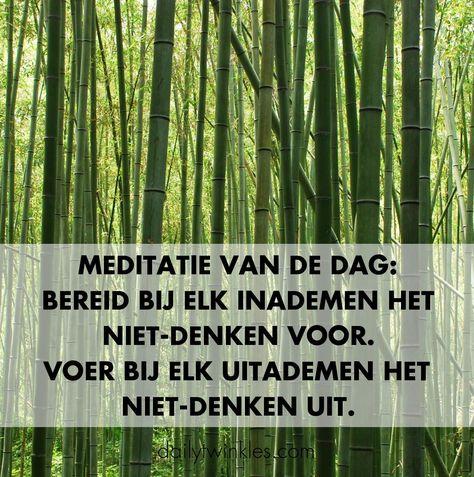 Meditatie van de dag:bereid bij elk inademen het niet-denken voor.Voer bij elk uitademen het niet-denken uit.