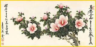 Korean National Flower Moo Gung Hwa Hibiscus Syriacus Con