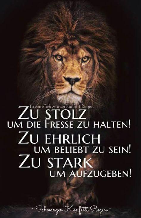 #zitate #fresse #halten #stolz #passt #die - #die #fresse #halten #passt #stolz #Zitate
