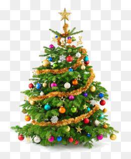 그린 크리스마스 트리 재료 나무 클립 아트 초록 크리스마스 트리무료 다운로드를위한 Png 및 Psd 파일 크리스마스 트리 크리스마스 크리스마스 그림