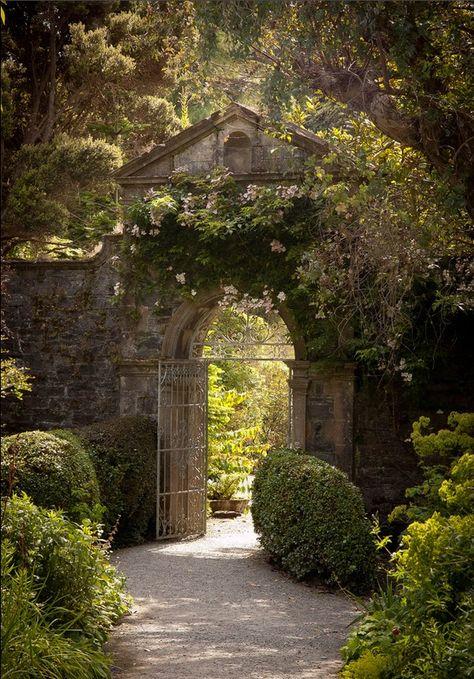 Garden in Garinish Island, Glengarriff, Co. Cork, Ireland - by Clare Wilson