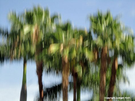 Mastering the Art of Intentional Camera Movement