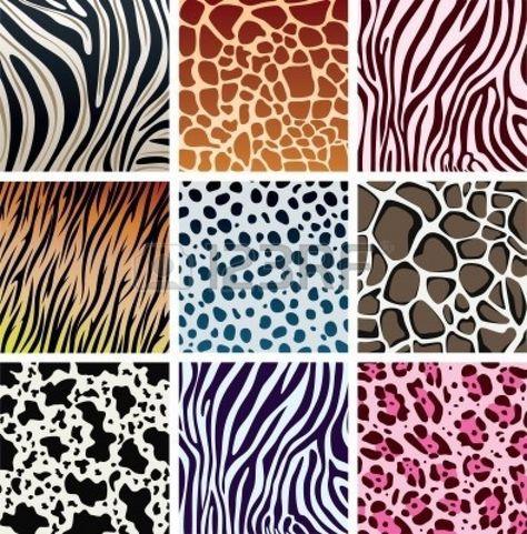 Animal Skin Textures Of Tiger, Zebra, Giraffe, Leopard, Cow ...