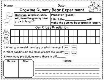 Growing Gummy Bear Science Experiment Cool Science Fair Projects