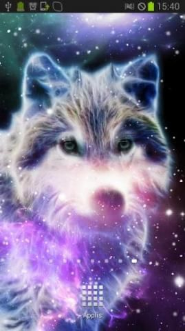 Free Download Galaxy Wolf Wallpaper 1024x640 For Your Desktop Mobile Tablet Explore 46 Galaxy Wolf Wallpape Wolf Wallpaper Galaxy Wolf Colorful Animals
