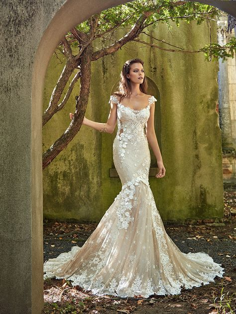 Champagne Lace Fit to Flare Galia Lahav Wedding Dress