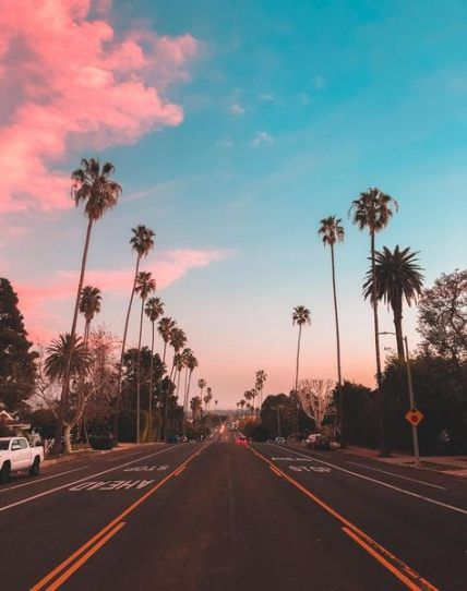 Palm Tree Wallpaper Los Angeles 49 Trendy Ideas In 2020 Sky Aesthetic California Palm Trees Palm Trees Wallpaper