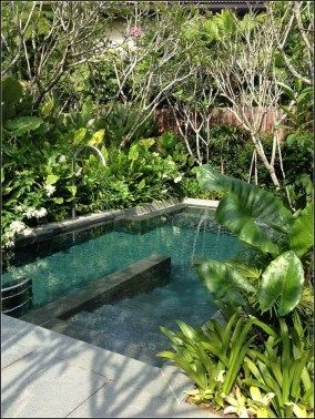 125 Simple Small Swimming Pool Ideas For Minimalist Home Page 44 Pool Landscaping Cool Pools Tropical Pool