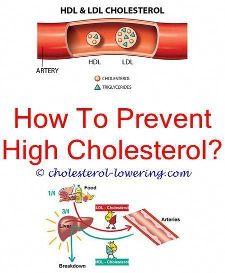 High Cholesterol Cholesterol Level 6