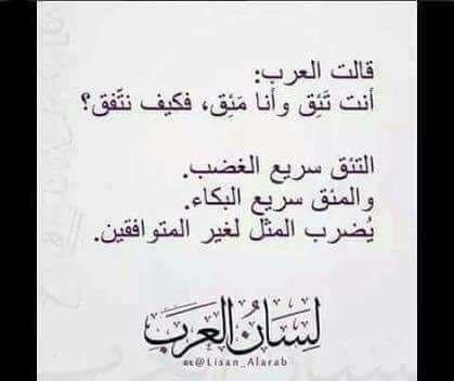Pin By Hasan Zubi On حروف كتبت برحيق النحل كلمات زي العسل Islamic Quotes Quotes Best Quotes