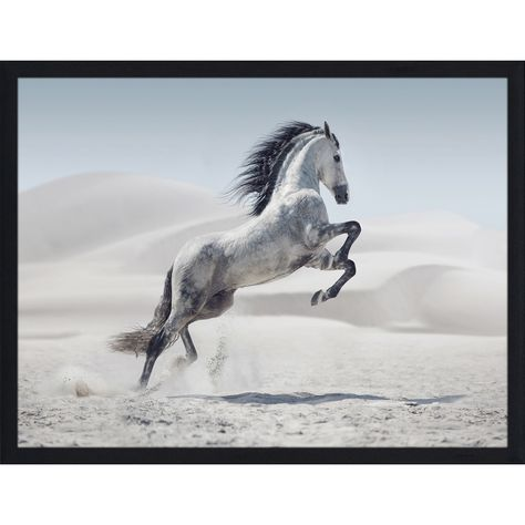 """The Winter Stallion""Framed Plexiglass Wall Art (39.5 "" Wide X 27.5 "" High X 0.75 "" Deep), White, Picture Perfect International"