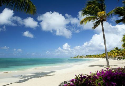 only a few more days and I will be here | Antigua