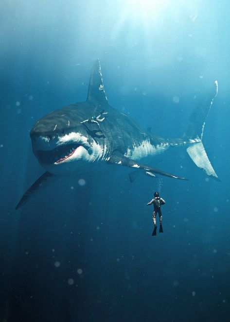 THE MEGALODON 🦈 Is this your worst nightmare, or wildest fantasy? Art by Shark model by Julian Johnson Shark Pictures, Shark Photos, Random Pictures, Dinosaure Herbivore, Scary Ocean, Scary Shark, Huge Shark, Les Reptiles, Shark Art