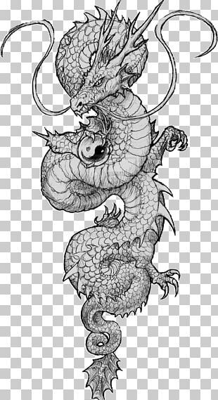 Chinese Dragon Tattoo Japanese Dragon Drawing PNG - Free Download