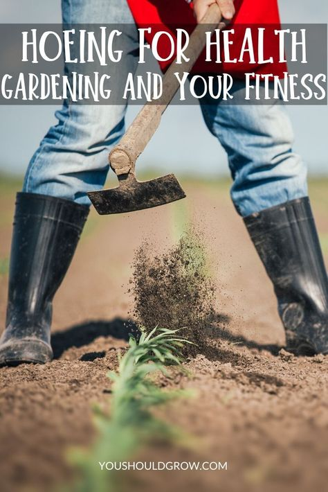 Hoeing For Health Gardening And Your Fitness Vegetable Garden