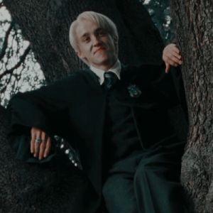 stuff — draco malfoy and hermione granger icons // order. Draco Harry Potter, Harry Potter Icons, Harry Potter Characters, Harry Ptter, Fictional Characters, Draco Malfoy Aesthetic, Slytherin Aesthetic, Tom Felton, Dramione