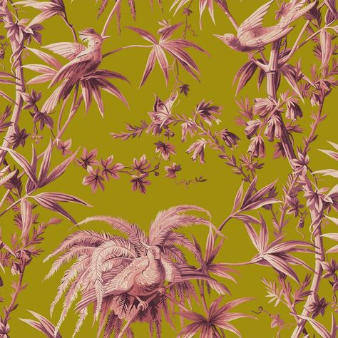 Aurora Wallpaper Chartreuse Spring Summer 18 Pinterest