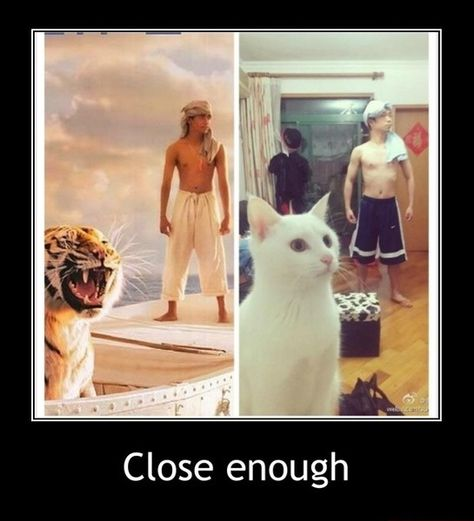 I am Pi, and this is Richard Parker
