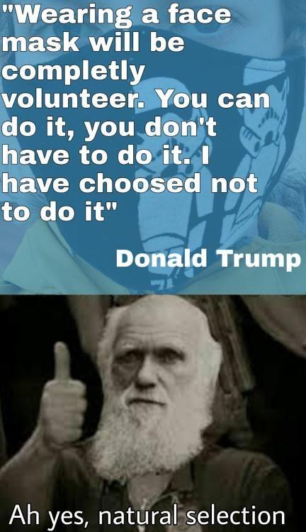 I Made This Meme Buy Now Via R Memeeconomy Memes Best Memes Stuff To Buy