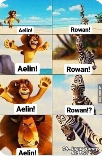Memes at 11 | Fandom