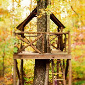 easy tree house designs.  28 Inspiring Treehouse Designs Rope bridge Pulley and