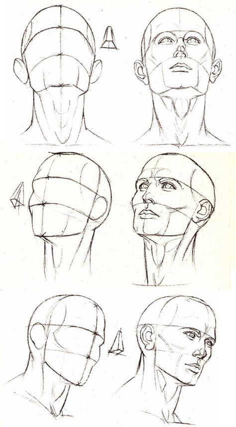 Super Drawing Reference Head Anatomy 33 Ideas Poses Para Fotografia Drawing Heads Drawing People Anatomy Sketches