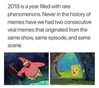 Rare Phenomenons 2018 Meme Addition Crazy Funny Memes Spongebob Funny Funny Memes