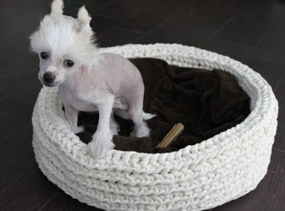 Virkattu Koiran Peti Pets Dog Bowls Plastic Laundry Basket
