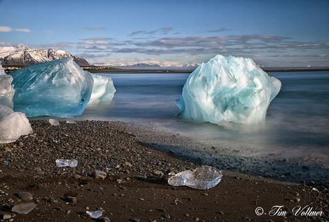 tim vollmer icebergs