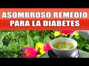 cura natural para la diabetes youtube