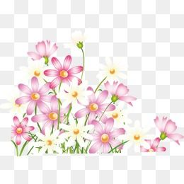 Beautiful Fresh Spring Flowers Spring Fresh Beautiful Png And