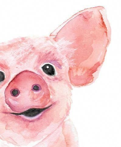 Watercolor Pig Watercolor Farm Animal Watercolor Art Print
