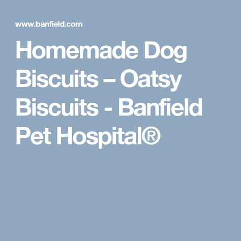 Homemade Dog Biscuits Oatsy Biscuits Banfield Pet Hospital Dog Biscuits Homemade Recipe For Homemade Dog Biscuits Dog Biscuits