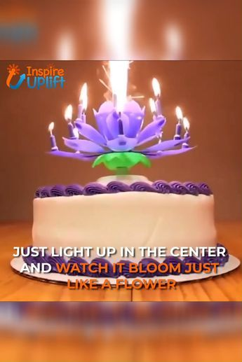 Blooming Musical Candle Birthday Candles Birthday Songs Unique Birthday Ideas