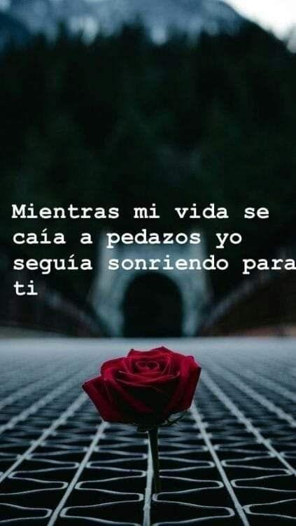 #mientras #pedazos #vida #caa #mi #se #a➷ Mientras mi vida se caía a pedazos...➷ Mientras mi vida se caía a pedazos...